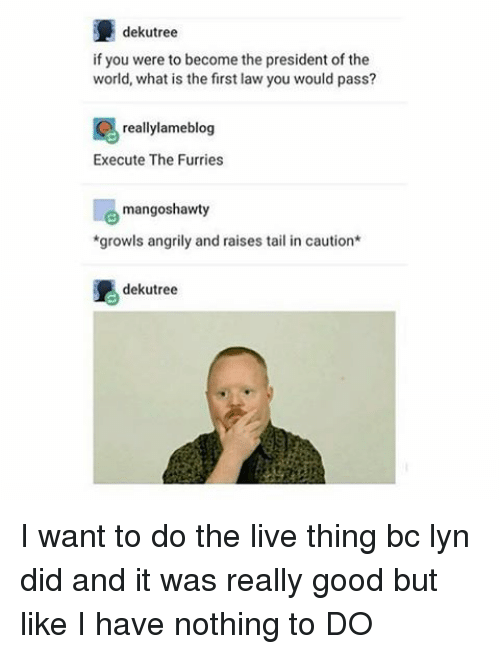 Memes, 🤖, and Furry: dekutree  if you were to become the president of the  world, what is the first law you would pass?  really lameblog  Execute The Furries  mangoshawty  *growls angrily and raises tail in caution  dekutree I want to do the live thing bc lyn did and it was really good but like I have nothing to DO