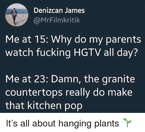 Fucking, Ironic, and Parents: Denizcan James  @MrFilmkritik  Me at 15: Why do my parents  watch fucking HGTV all day?  Me at 23: Damn, the granite  countertops really do make  that kitchen pop It's all about hanging plants 🌱