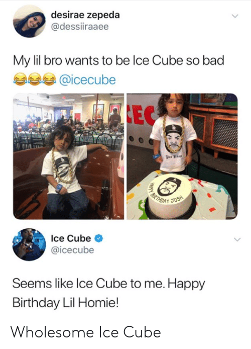Bad, Birthday, and Homie: desirae zepeda  @dessiiraaee  My lil bro wants to be lce Cube so bad  @icecube  Ice Cube <  @icecube  Seems like lce Cube to me. Happy  Birthday Lil Homie! Wholesome Ice Cube