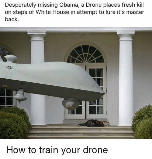 drones with Desperately Missing Obama A Drone Places Fresh Kill On Steps 11161746 on Attachment additionally Woahdude Ostrich 8Tef08odAfsXu further Attachment also Desperately Missing Obama A Drone Places Fresh Kill On Steps 11161746 as well Hires.