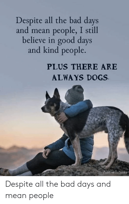 Bad, Dogs, and Memes: Despite all the bad days  and mean people, I still  believe in good days  and kind people.  PLUS THERE ARE  ALWAYS DOGS  PositiveOutlooks Despite all the bad days and mean people