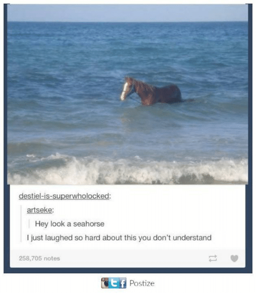 Dank, 🤖, and Seahorse: destiel-is-superwholocked:  artseke  Hey look a seahorse  I just laughed so hard about this you don't understand  258,705 notes  Postize