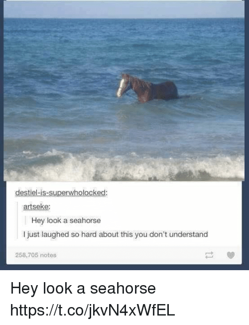 Seahorse, You, and Notes: destiel-is-superwholocked:  artseke:  Hey look a seahorse  I just laughed so hard about this you don't understand  258,705 notes Hey look a seahorse https://t.co/jkvN4xWfEL