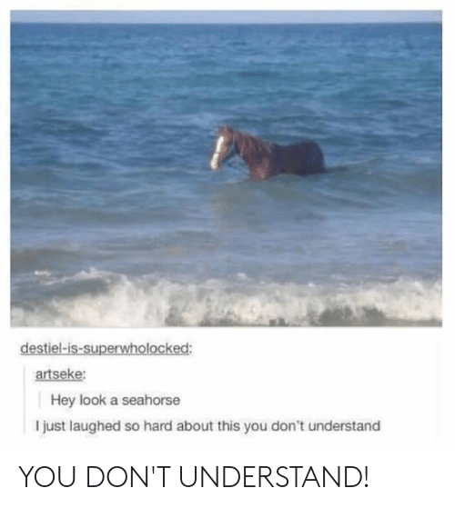 Seahorse, You, and Look: destiel-is-superwholocked:  artseke:  Hey look a seahorse  I just laughed so hard about this you don't understand YOU DON'T UNDERSTAND!