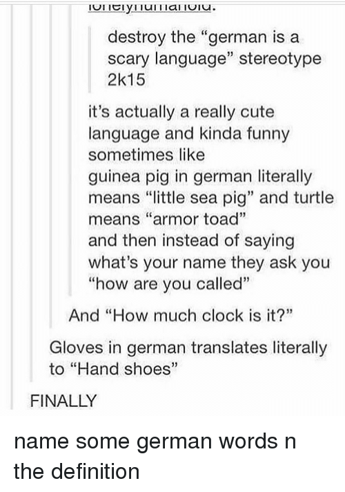 "Clock, Cute, and Funny: destroy the ""german is a  scary language"" stereotype  2k15  it's actually a really cute  language and kinda funny  sometimes like  guinea pig in german literally  means ""little sea pig"" and turtle  means ""armor toad""  and then instead of saying  what's your name they ask you  ""how are vou called""  And ""How much clock is it?""  Gloves in german translates literally  to ""Hand shoes""  FINALLY name some german words n the definition"