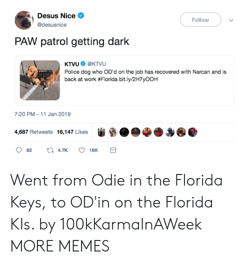 Dank, Memes, and Police: Desus Nice  @desusnice  Follow  PAW patrol getting dark  KTVU. @KTVU  Police dog who OD'd on the job has recovered with Narcan and is  back at work #Florida bit.ly/2H7yOOH  7:20 PM-11 Jan 2019  4,687 Retweets 16,147 Likes  ●●●●● Went from Odie in the Florida Keys, to OD'in on the Florida KIs. by 100kKarmaInAWeek MORE MEMES