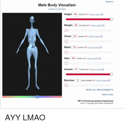 body visualizer with muscle