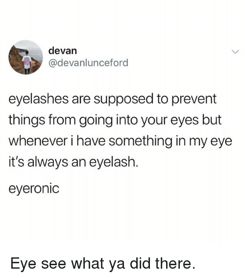 Memes, 🤖, and Eye: devan  @devanlunceford  eyelashes are supposed to prevent  things from going into your eyes but  whenever i have something in my eye  it's always an eyelash.  eyeronic Eye see what ya did there.