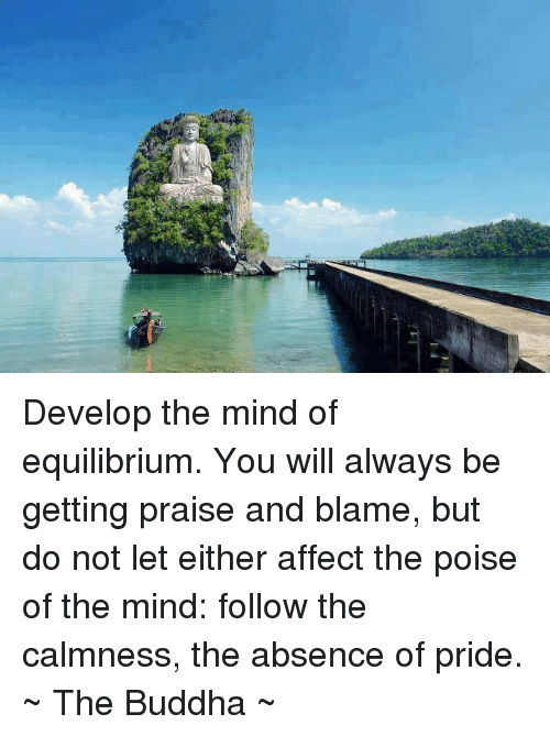 develop the mind of equilibrium you will always be getting 5650436 ✅ 25 best memes about equilibrium equilibrium memes,Equilibrium Memes
