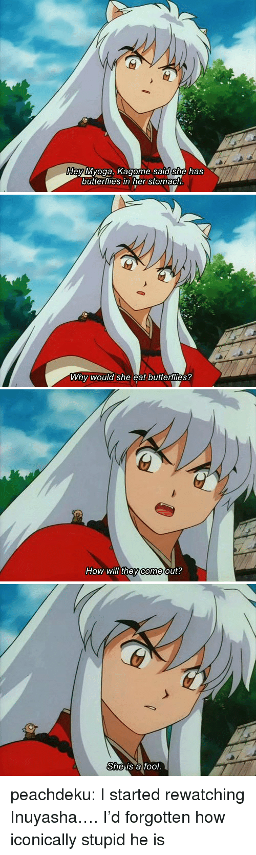 Dey Myoga Kagome Sald She Has Buttertlies In Her Stomach Why Would