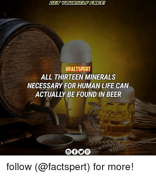 Beer, Life, and Memes: DFACTSPERT  ALL THIRTEEN MINERALS  NECESSARY FOR HUMAN LIFE CAN  ACTUALLY BE FOUND IN BEER follow (@factspert) for more!