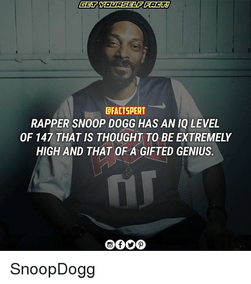 Memes, Snoop, and Snoop Dogg: DFACTSPERT  RAPPER SNOOP DOGG HAS AN IQ LEVEL  OF 147 THAT IS THOUGHT TO BE EXTREMELY  HIGH AND THAT OF A GIFTED GENIUS. SnoopDogg