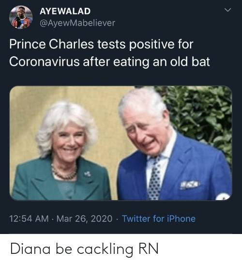 Blackpeopletwitter, Funny, and Diana: Diana be cackling RN