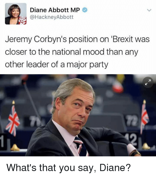 "Memes, Mood, and Brexit: Diane Abbott MP  @HackneyAbbott  Jeremy Corbyn's position on ""Brexit was  closer to the national mood than any  other leader of a major party What's that you say, Diane?"