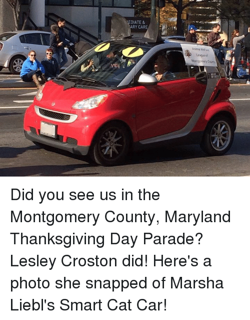 Memes, Maryland, and Thanksgiving Day: DIATE &  RY CARE  Leagasts Did you see us in the Montgomery County, Maryland Thanksgiving Day Parade? Lesley Croston did! Here's a photo she snapped of Marsha Liebl's Smart Cat Car!