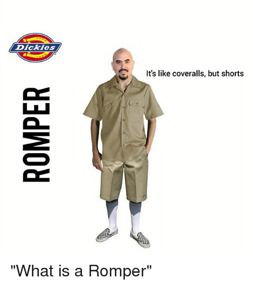 0dec519d62d Dickies It s Like Coveralls but Shorts What Is a Romper