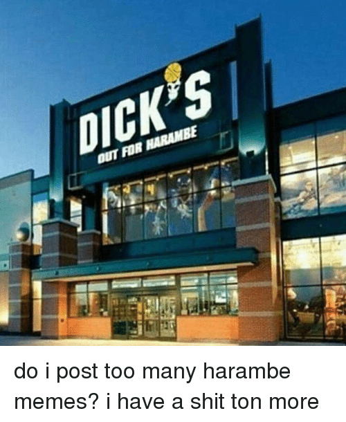 Dank Memes, Ton, and A Shit: DICK'S  OUT FOR HARAMBE do i post too many harambe memes? i have a shit ton more