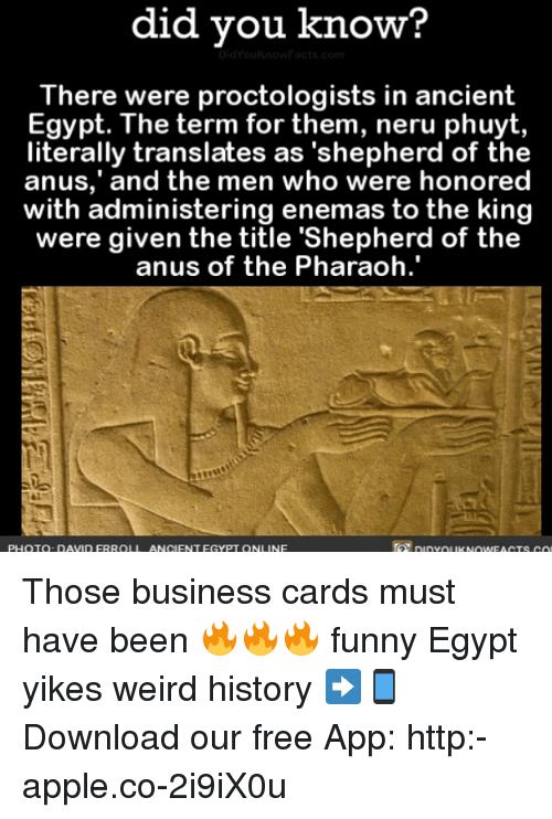 """Apple, Funny, and Memes: did did you know?  The  were proctologists in ancient  Egypt. The term for them, neru phuyt,  literally translates as """"shepherd of the  and the men who were honored  anus,' with administering enemas to the king  were given the title 'Shepherd of the  anus of the Pharaoh  PHOTO DAVID FRROLI ANCIENT EGYPT ON  NE Those business cards must have been 🔥🔥🔥 funny Egypt yikes weird history ➡📱Download our free App: http:-apple.co-2i9iX0u"""