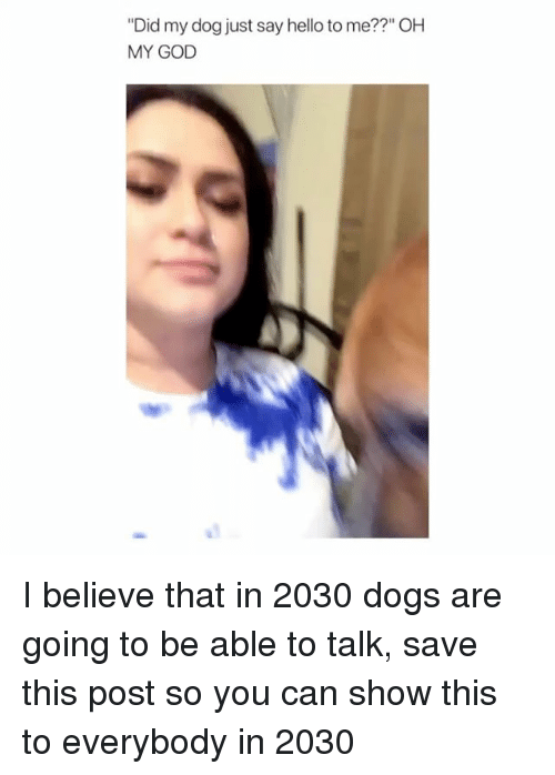 "Dogs, God, and Hello: ""Did my dog just say hello to me??"" OH  MY GOD I believe that in 2030 dogs are going to be able to talk, save this post so you can show this to everybody in 2030"