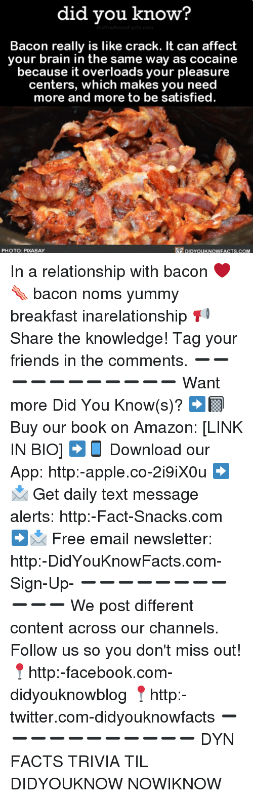 Amazon, Apple, and Facebook: did vou know?  Bacon really is like crack. It can affect  your brain in the same way as cocaine  because it overloads your pleasure  centers, which makes you need  more and more to be satisfied  te  PHOTO: PIXABAY  DIDYOUKNOWFACTS.COM In a relationship with bacon ❤️🥓 bacon noms yummy breakfast inarelationship 📢 Share the knowledge! Tag your friends in the comments. ➖➖➖➖➖➖➖➖➖➖➖ Want more Did You Know(s)? ➡📓 Buy our book on Amazon: [LINK IN BIO] ➡📱 Download our App: http:-apple.co-2i9iX0u ➡📩 Get daily text message alerts: http:-Fact-Snacks.com ➡📩 Free email newsletter: http:-DidYouKnowFacts.com-Sign-Up- ➖➖➖➖➖➖➖➖➖➖➖ We post different content across our channels. Follow us so you don't miss out! 📍http:-facebook.com-didyouknowblog 📍http:-twitter.com-didyouknowfacts ➖➖➖➖➖➖➖➖➖➖➖ DYN FACTS TRIVIA TIL DIDYOUKNOW NOWIKNOW