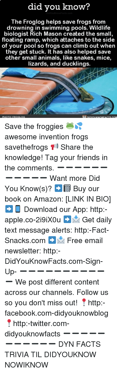 Amazon, Animals, And Apple: Did Vou Know? The Froglog Helps Save Frogs
