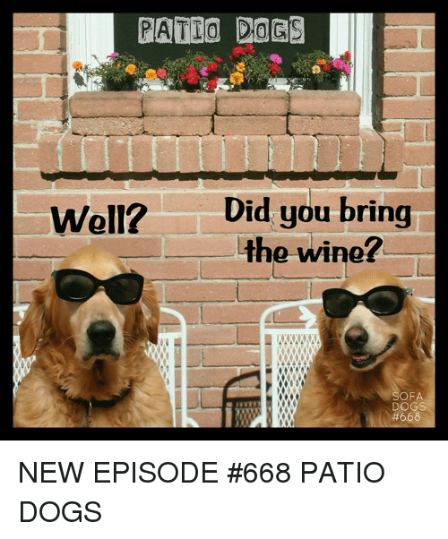Did You Bring The Wine Well Sofa Dogs New Episode 668 Patio Dogs