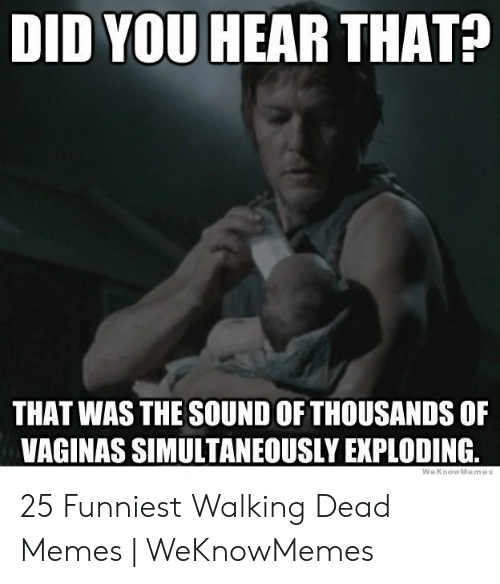 Memes, Walking Dead, and Sound: DID YOU HEAR THAT?  THAT WAS THE SOUND OF THOUSANDS OF  VAGINAS SIMULTANEOUSLY EXPLODING 25 Funniest Walking Dead Memes | WeKnowMemes