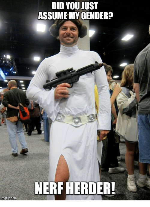 Nerf, Com, and Did: DID YOU JUST  ASSUME MY GENDERP  NERF HERDER!  imgfilip.com