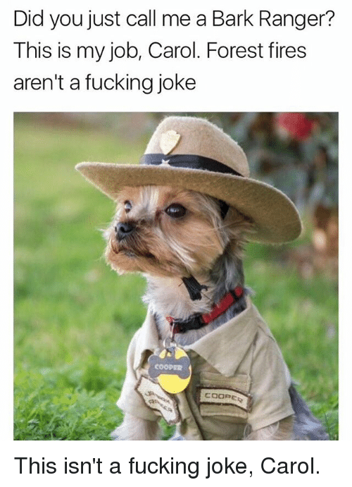 Fucking, Dank Memes, and Ranger: Did you just call me a Bark Ranger?  This is my job, Carol. Forest fires  aren't a fucking joke This isn't a fucking joke, Carol.