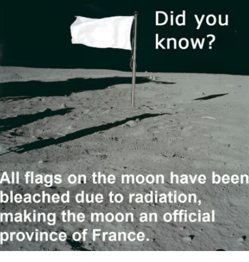 France, Moon, and Been: Did you  know?  All flags on the moon have been  bleached due to radiation,  making the moon an official  province of France