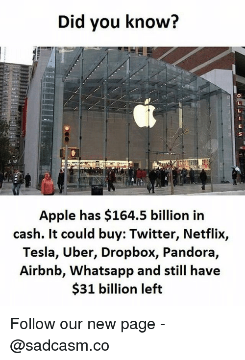 Apple, Memes, and Netflix: Did you know?  Apple has $164.5 billion in  cash. It could buy: Twitter, Netflix,  Tesla, Uber, Dropbox, Pandora,  Airbnb, Whatsapp and still have  $31 billion left Follow our new page - @sadcasm.co
