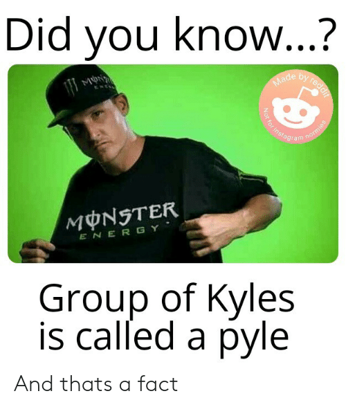 Did You Know? By Reddif Made Not for Instagram Normies