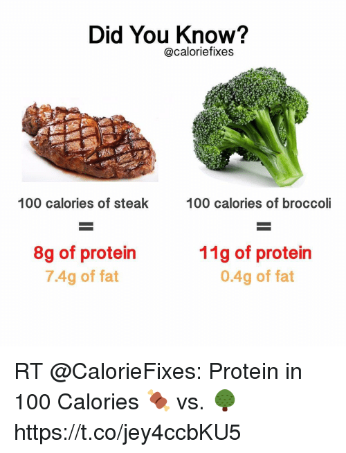 Anaconda, Funny, and Protein: Did You Know?  @caloriefixes  100 calories of steak  100 calories of broccol  8g of protein  7.4g of fat  11g of protein  0.4g of fat RT @CalorieFixes: Protein in 100 Calories 🍖 vs. 🌳 https://t.co/jey4ccbKU5