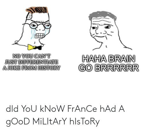 France, Good, and History: dId YoU kNoW FrAnCe hAd A gOoD MiLItArY hIsToRy