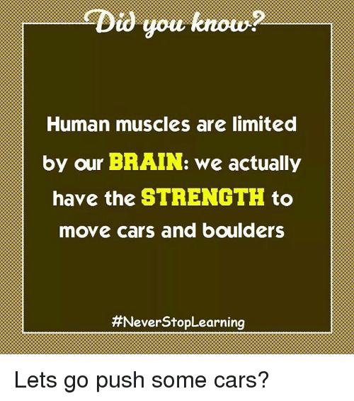 human muscles limited by brain – citybeauty, Muscles