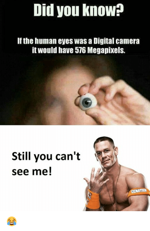 you can t see me meme