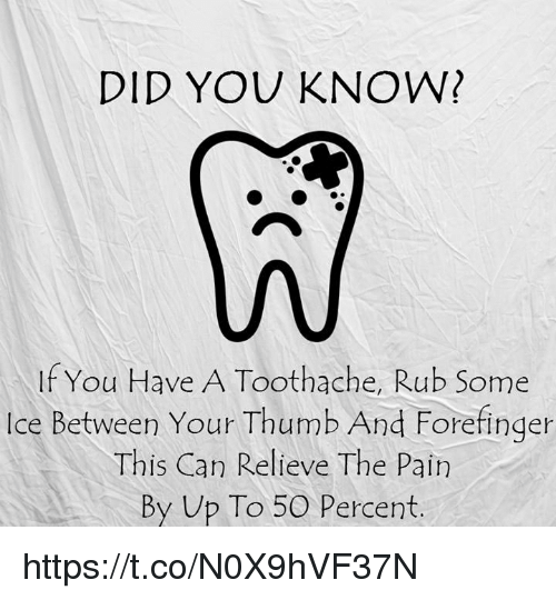 did you know if you have a toothache rub some 11208468 did you know? if you have a toothache rub some ice between your