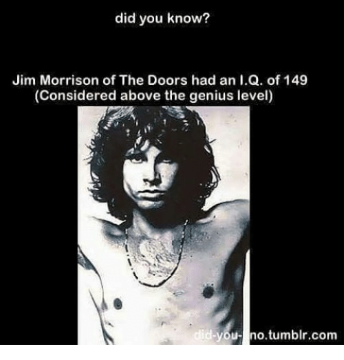 Jim Morrison Memes and ? did you know? Jim Morrison of The  sc 1 st  Me.me & Did You Know? Jim Morrison of the Doors Had an IQ of 149 Considered ...
