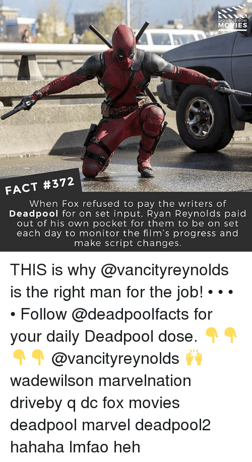 Facts, Memes, and Movies: DID YOU KNOW  MOVIES  FACT #372  When Fox refused to pay the writers of  Deadpool for on set input, Ryan Reynolds paid  out of his own pocket for them to be on set  each day to monitor the film's progress and  make script changes THIS is why @vancityreynolds is the right man for the job! • • • • Follow @deadpoolfacts for your daily Deadpool dose. 👇👇👇👇 @vancityreynolds 🙌 wadewilson marvelnation driveby q dc fox movies deadpool marvel deadpool2 hahaha lmfao heh