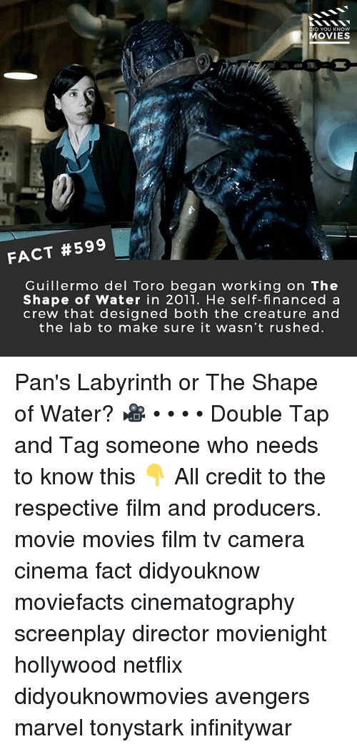 Memes, Movies, and Netflix: DID YOU KNOW  MOVIES  FACT #599  Guillermo del Toro began working on The  Shape of Water in 2011. He self-financed a  crew that designed both the creature and  the la b to make sure it wasn't rushed Pan's Labyrinth or The Shape of Water? 🎥 • • • • Double Tap and Tag someone who needs to know this 👇 All credit to the respective film and producers. movie movies film tv camera cinema fact didyouknow moviefacts cinematography screenplay director movienight hollywood netflix didyouknowmovies avengers marvel tonystark infinitywar