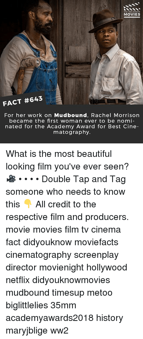 Beautiful, Memes, and Movies: DID YOU KNOW  MOVIES  FACT #643  For her work on Mudbound, Rachel Morrisorn  became the first woman ever to be nomi  nated for the Academy Award for Best Cine  matography. What is the most beautiful looking film you've ever seen? 🎥 • • • • Double Tap and Tag someone who needs to know this 👇 All credit to the respective film and producers. movie movies film tv cinema fact didyouknow moviefacts cinematography screenplay director movienight hollywood netflix didyouknowmovies mudbound timesup metoo biglittlelies 35mm academyawards2018 history maryjblige ww2