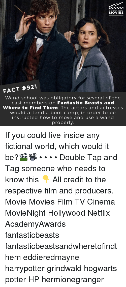 Memes, Movies, and Netflix: DID YOU KNOW  MOVIES  FACT #921  Wand school was obligatory for several of thee  cast members on Fantastic Beasts and  Where to Find Them. The actors and actresses  would attend a boot camp, in order to be  instructed how to move and use a wand  properly If you could live inside any fictional world, which would it be?🎬📽️ • • • • Double Tap and Tag someone who needs to know this 👇 All credit to the respective film and producers. Movie Movies Film TV Cinema MovieNight Hollywood Netflix AcademyAwards fantasticbeasts fantasticbeastsandwheretofindthem eddieredmayne harrypotter grindwald hogwarts potter HP hermionegranger