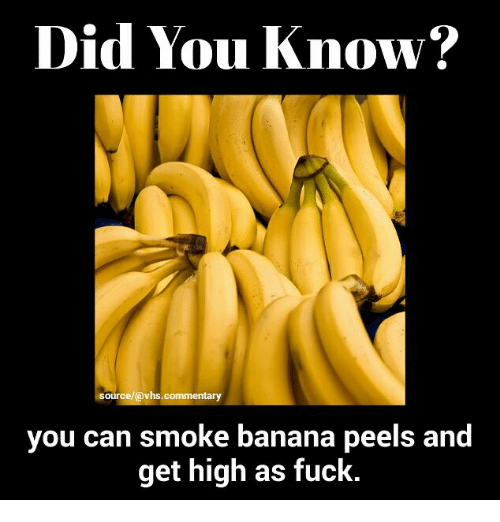 smoking banana peels Published april 2, 2016 at 300 × 457 in why hippies thought smoking banana peels could get you high image navigation ← previous next.