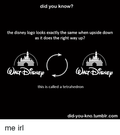 Disney Tumblr And Irl Did You Know The Logo Looks Exactly