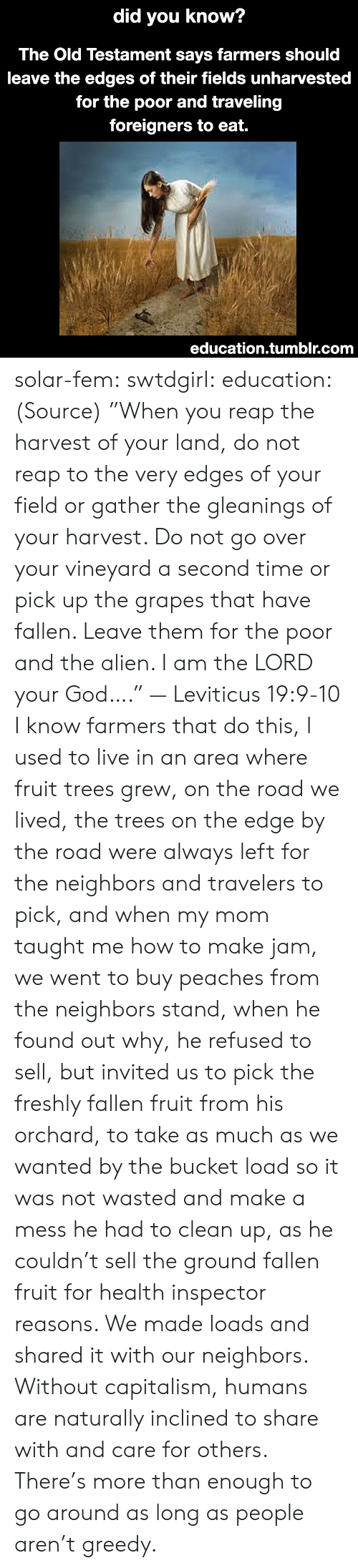 """God, Tumblr, and Alien: did  you know?  The Old Testament says farmers should  leave the edges of their fields unharvested  for the poor and traveling  foreigners to eat.  education.tumblr.com solar-fem:  swtdgirl:  education:   (Source) """"When you reap the harvest of your land, do not reap to the very edges of your field or gather the gleanings of your harvest. Do not go over your vineyard a second time or pick up the grapes that have fallen. Leave them for the poor and the alien. I am the LORD your God…."""" — Leviticus 19:9-10     I know farmers that do this, I used to live in an area where fruit trees grew, on the road we lived, the trees on the edge by the road were always left for the neighbors and travelers to pick, and when my mom taught me how to make jam, we went to buy peaches from the neighbors stand, when he found out why, he refused to sell, but invited us to pick the freshly fallen fruit from his orchard, to take as much as we wanted by the bucket load so it was not wasted and make a mess he had to clean up, as he couldn't sell the ground fallen fruit for health inspector reasons. We made loads and shared it with our neighbors.  Without capitalism, humans are naturally inclined to share with and care for others. There's more than enough to go around as long as people aren't greedy."""