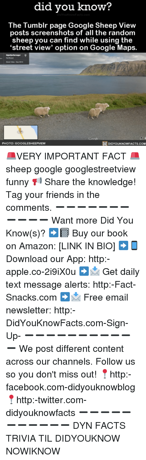 Amazon, Apple, and Facebook: did you know?  The Tumblr page Google Sheep View  posts screenshots of all the random  sheep you can find while using the  'street view' option on Google Maps.  PHOTO: GOOGLESHEEPVIEWN  DIDYOUKNOWFACTS.COM 🚨VERY IMPORTANT FACT 🚨 sheep google googlestreetview funny 📢 Share the knowledge! Tag your friends in the comments. ➖➖➖➖➖➖➖➖➖➖➖ Want more Did You Know(s)? ➡📓 Buy our book on Amazon: [LINK IN BIO] ➡📱 Download our App: http:-apple.co-2i9iX0u ➡📩 Get daily text message alerts: http:-Fact-Snacks.com ➡📩 Free email newsletter: http:-DidYouKnowFacts.com-Sign-Up- ➖➖➖➖➖➖➖➖➖➖➖ We post different content across our channels. Follow us so you don't miss out! 📍http:-facebook.com-didyouknowblog 📍http:-twitter.com-didyouknowfacts ➖➖➖➖➖➖➖➖➖➖➖ DYN FACTS TRIVIA TIL DIDYOUKNOW NOWIKNOW