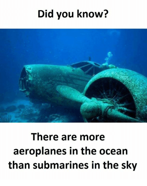 SIZZLE: Did you know?  There are more  aeroplanes in the ocean  than submarines in the sky