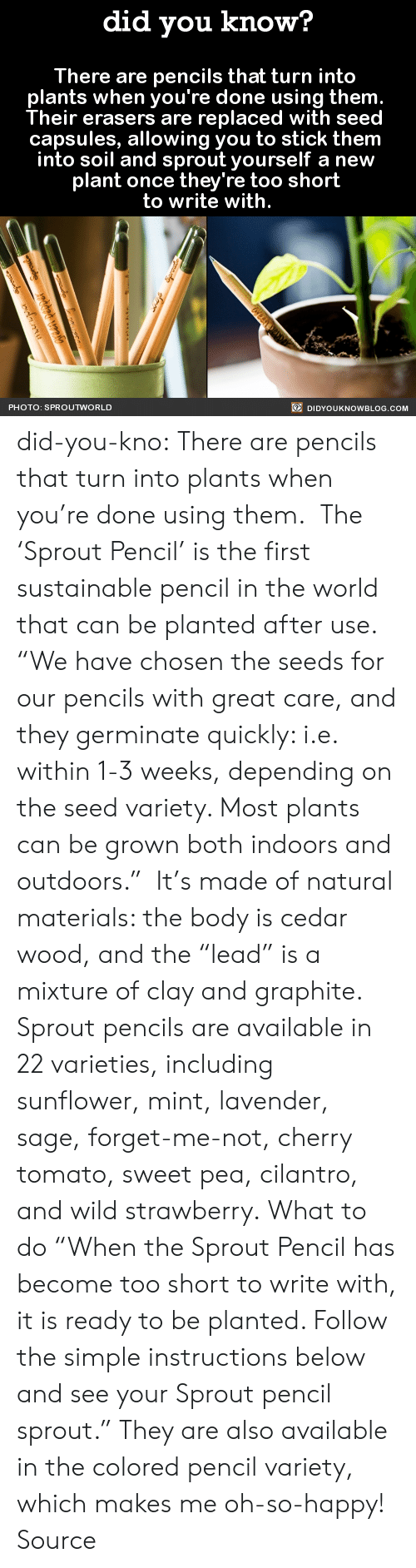 "Gif, Tumblr, and Blog: did you know?  There are pencils that turn into  plants when you're done using them  Their erasers are replaced with seed  capsules, allowing you to stick them  into soil and sprout yourself a new  plant once they're too short  to write with.  PHOTO: SPROUTWORLD  DIDYOUKNOWBLOG.COM did-you-kno:  There are pencils that turn into  plants when you're done using them.    The 'Sprout Pencil' is the first sustainable pencil in the world that can be planted after use.   ""We have chosen the seeds for our pencils with great care, and they germinate quickly: i.e. within 1-3 weeks, depending on the seed variety. Most plants can be grown both indoors and outdoors.""  It's made of natural materials: the body is cedar wood, and the ""lead"" is a mixture of clay and graphite. Sprout pencils are available in 22 varieties, including sunflower, mint, lavender, sage, forget-me-not, cherry tomato, sweet pea, cilantro, and wild strawberry. What to do ""When the Sprout Pencil has become too short to write with, it is ready to be planted. Follow the simple instructions below and see your Sprout pencil sprout."" They are also available in the colored pencil variety, which makes me oh-so-happy!  Source"
