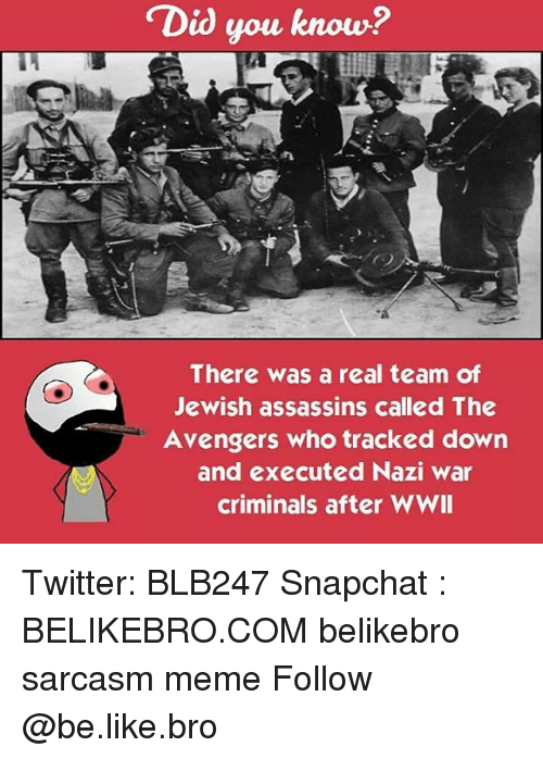 Be Like, Meme, and Memes: Did you know?  There was a real team of  Jewish assassins called The  Avengers who tracked down  and executed Nazi war  criminals after WWII Twitter: BLB247 Snapchat : BELIKEBRO.COM belikebro sarcasm meme Follow @be.like.bro