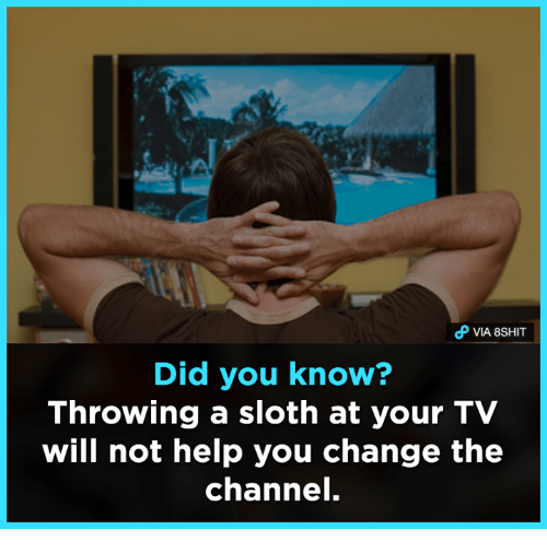 Memes, 🤖, and Channel: Did you know?  Throwing a sloth at your TV  will not help you change the  channel.